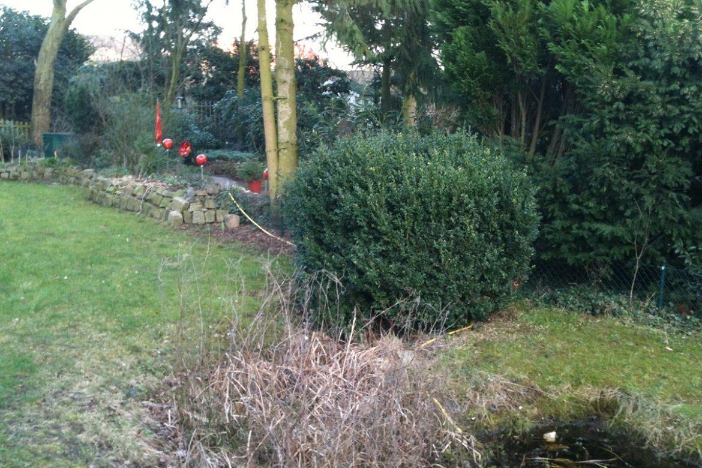 Schattengarten-vorher